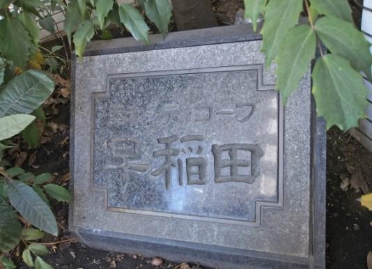 1450早稻田 3
